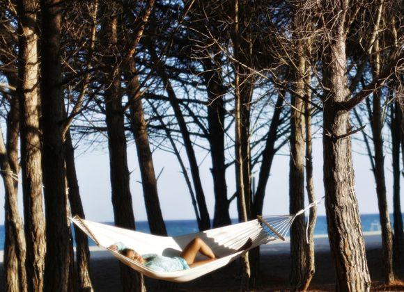 nuova_gestione_bovis_hotels_corte_bianca_cardedu_06