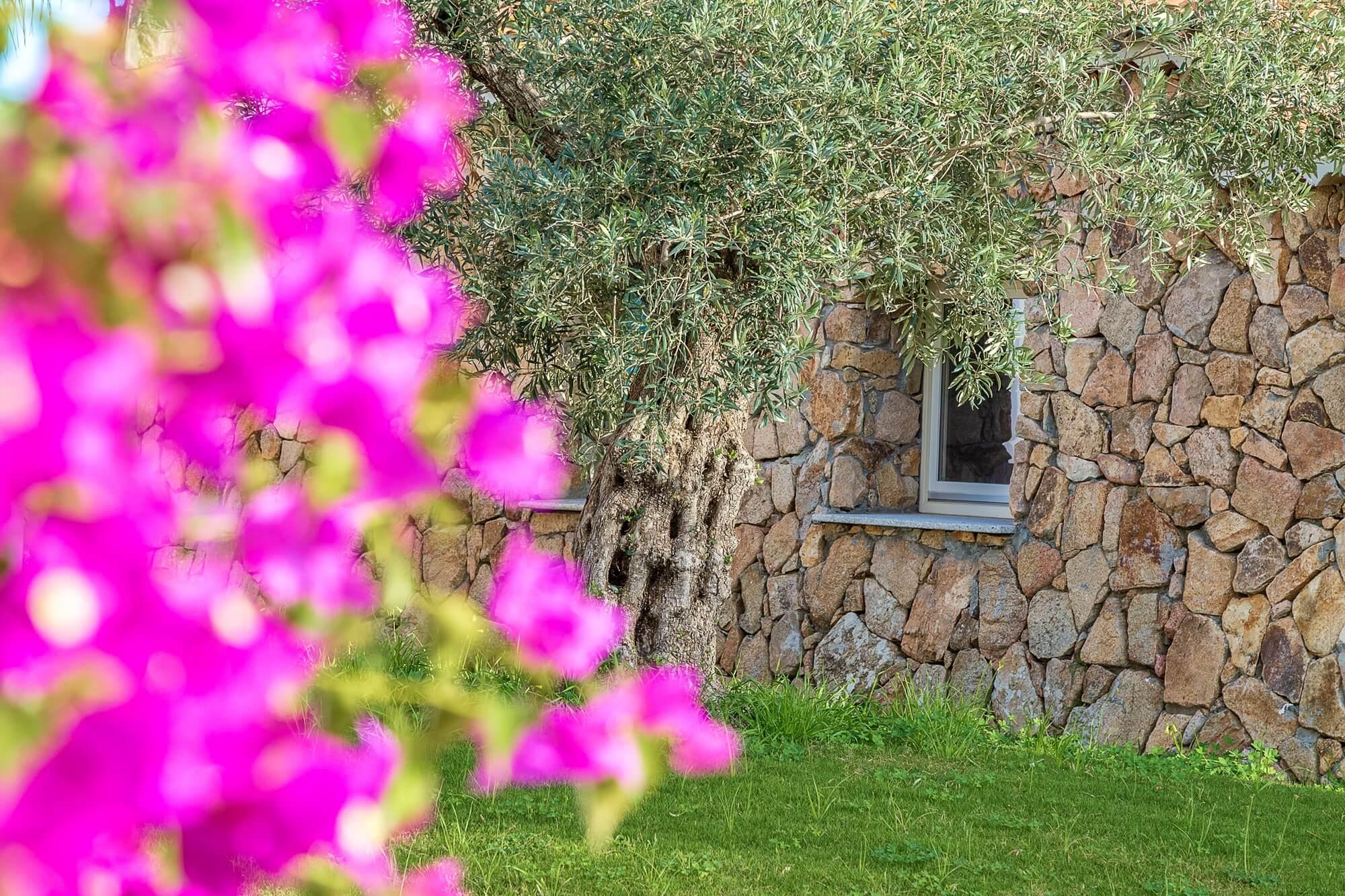 Immagini_hotel_corte_bianca_cardedu_006